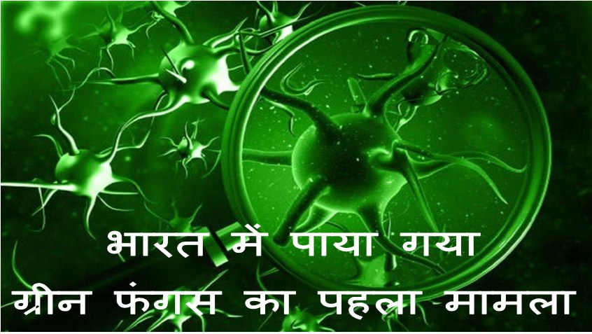 First Case of Green Fungus in India